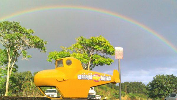 seasport divers kauai